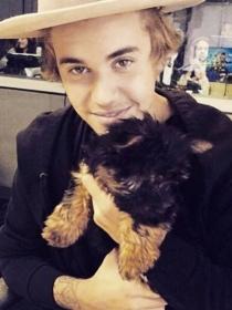 Esther y Todd, las adorables mascotas de Justin Bieber