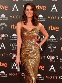 Premios Goya 2017: la alfombra roja del cine español