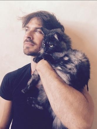 Nombres de gatos de famosos: las mascotas de las celebrities