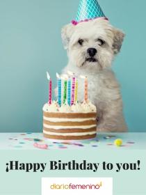 Tarjetas de felicitación para Leo: ¡Sorpréndele en su cumpleaños!