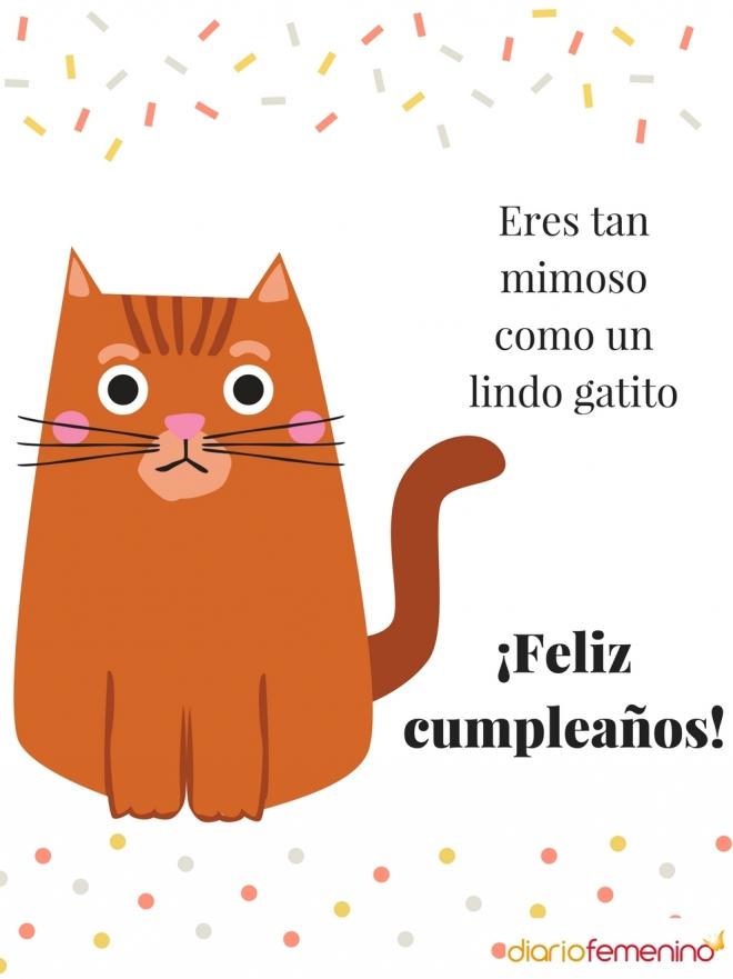 Originales tarjetas de felicitación para el cumpleaños de Acuario