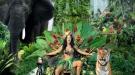 Katy Perry pone de moda el taparrabos con el selvático videoclip Roar