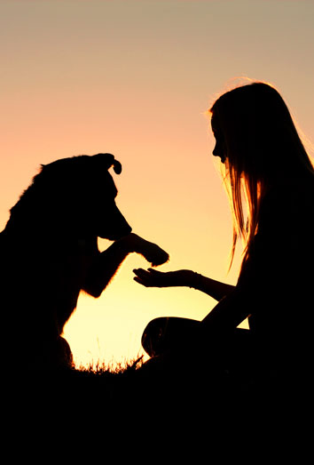 2022/08 Corazón de bruja Septiembre 2022 176915-perro