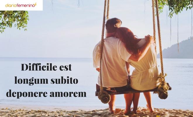 Frases de amor en lat n c mo enamorar como lo har a un for Frases en latin de amor