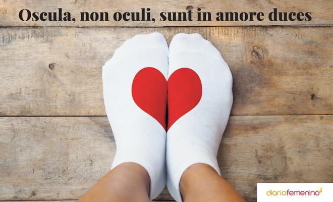 Frases De Amor En Latín Cómo Enamorar Como Lo Haría Un Filósofo