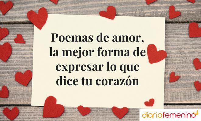 Poemas De Amor La Mejor Forma De Expresar Lo Que Dice Tu
