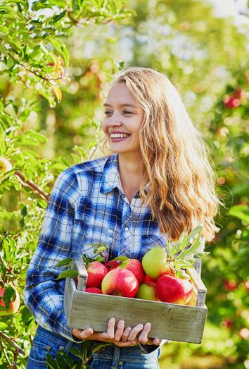 Fruta de otoño y sus beneficios para la salud