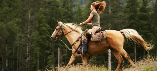 Qué significa soñar con caballos