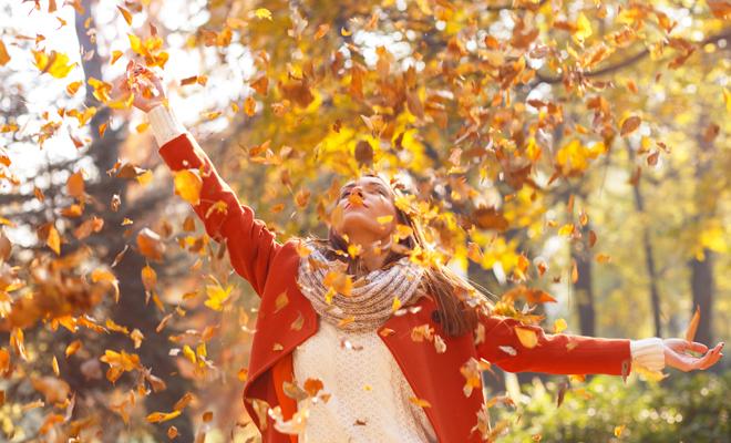 So ar con hojas cambio de ciclo en tus sue os y en tu vida for Arboles que no se le caen las hojas en invierno