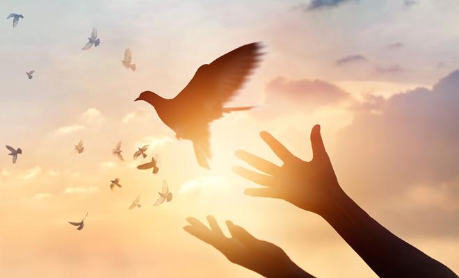 Poderosas Frases Sobre El Respeto Y La Tolerancia Para