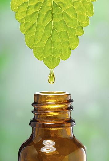acido urico en analitica que consecuencias tiene el acido urico en el organismo la levadura de cerveza es buena para el acido urico
